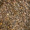 Grains de café torréfié origine Colombie
