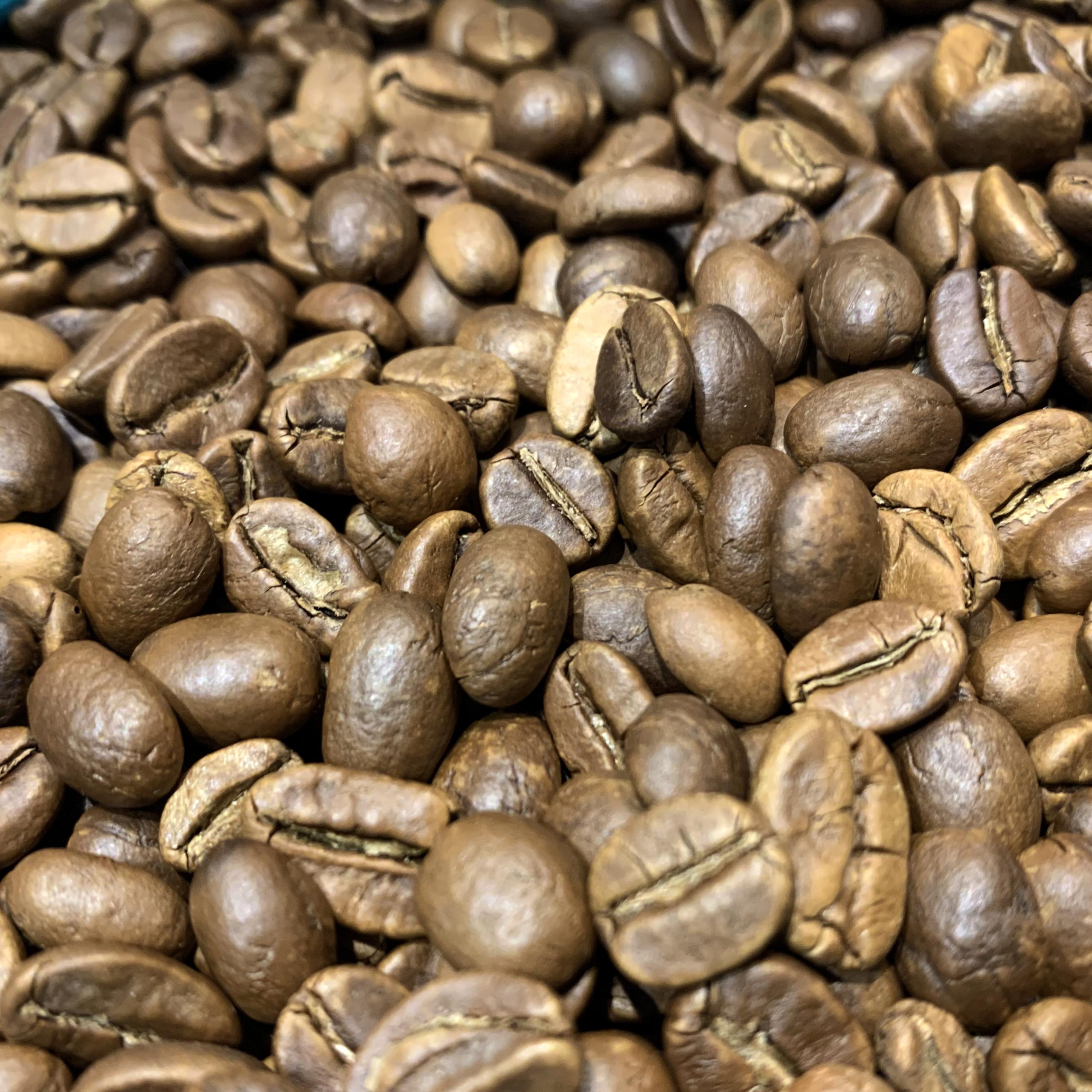Grains de café torréfiés - Malabar moussoné