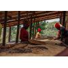 travailleuses de la coopérative au Rwanda